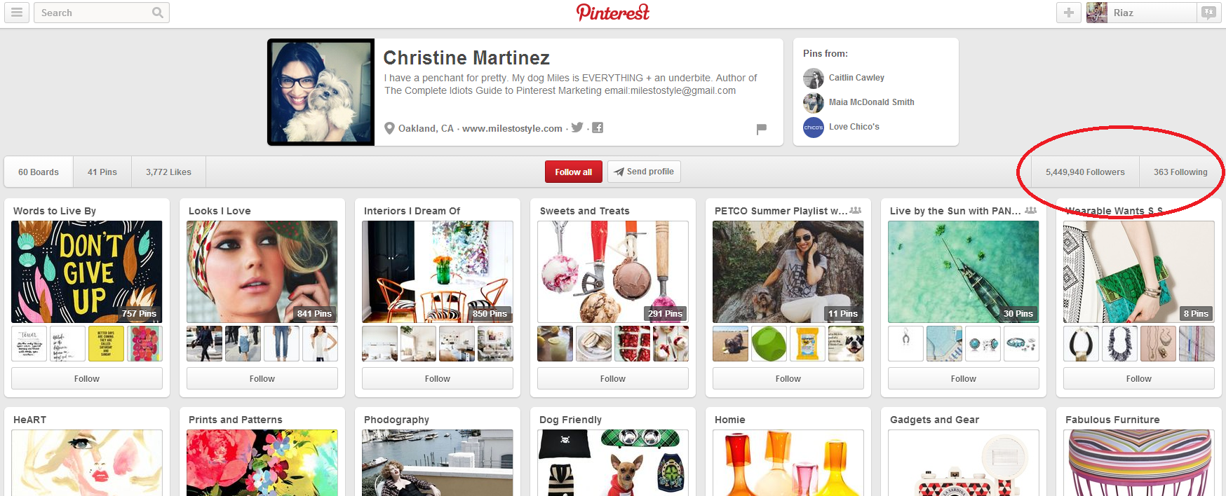 Christine Martinez's Pinterest account