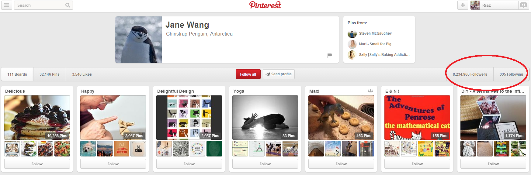 Jane Wang's Pinterest account