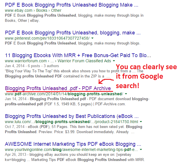 blogging profits unleashed Google search