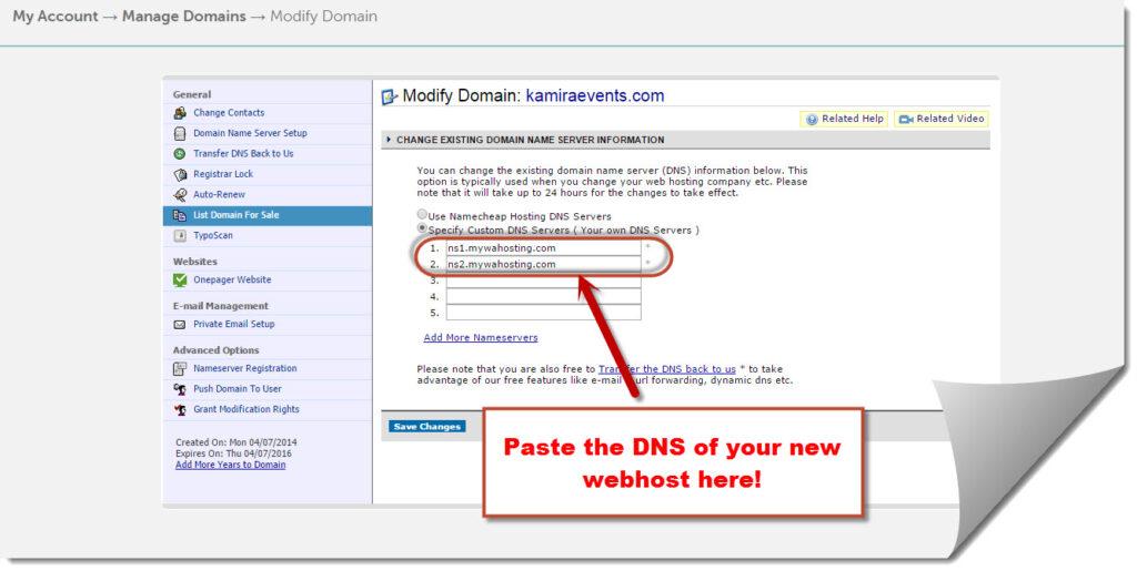 DNS pasting