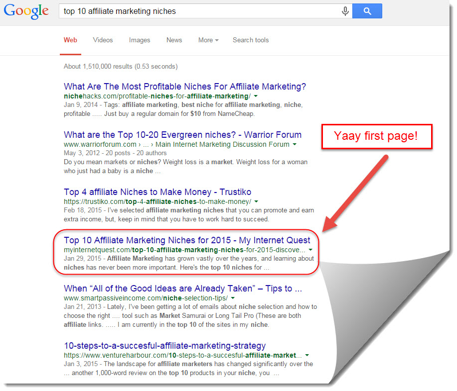 google search results for Top 10 Affiliate Marketing Niches