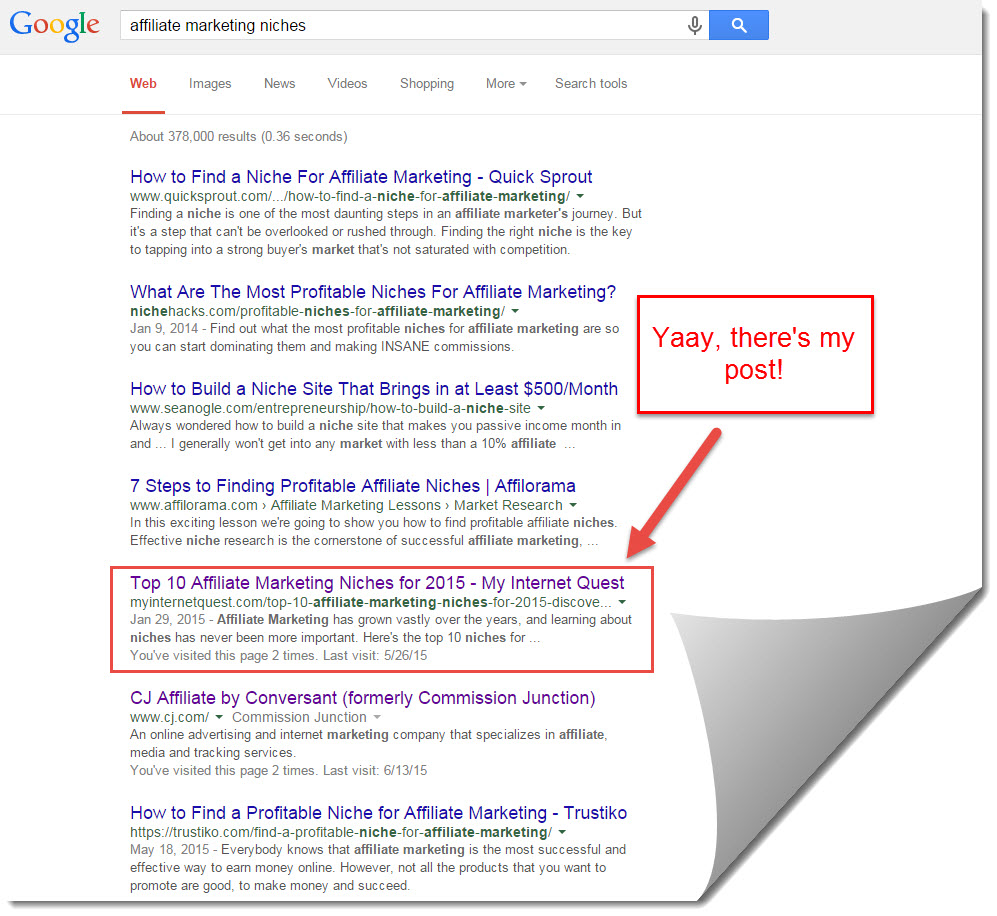 google search results for affiliate marketing niches
