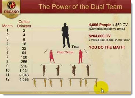 organo gold dual team bonus