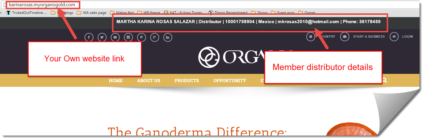 organo gold website affiliate