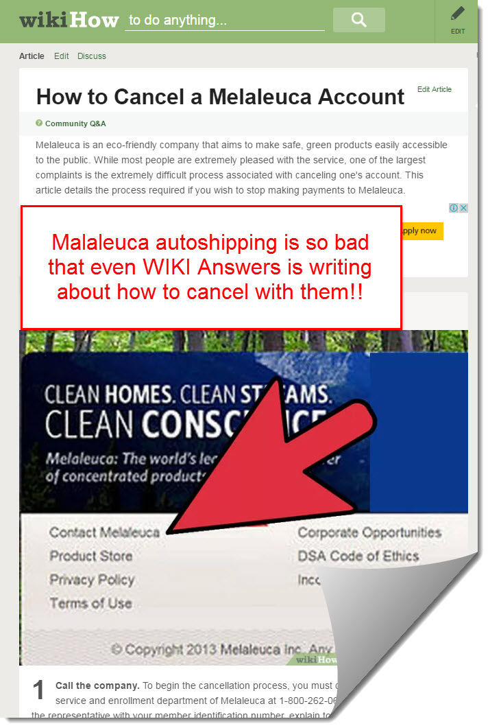 Malaleuca on wiki answers