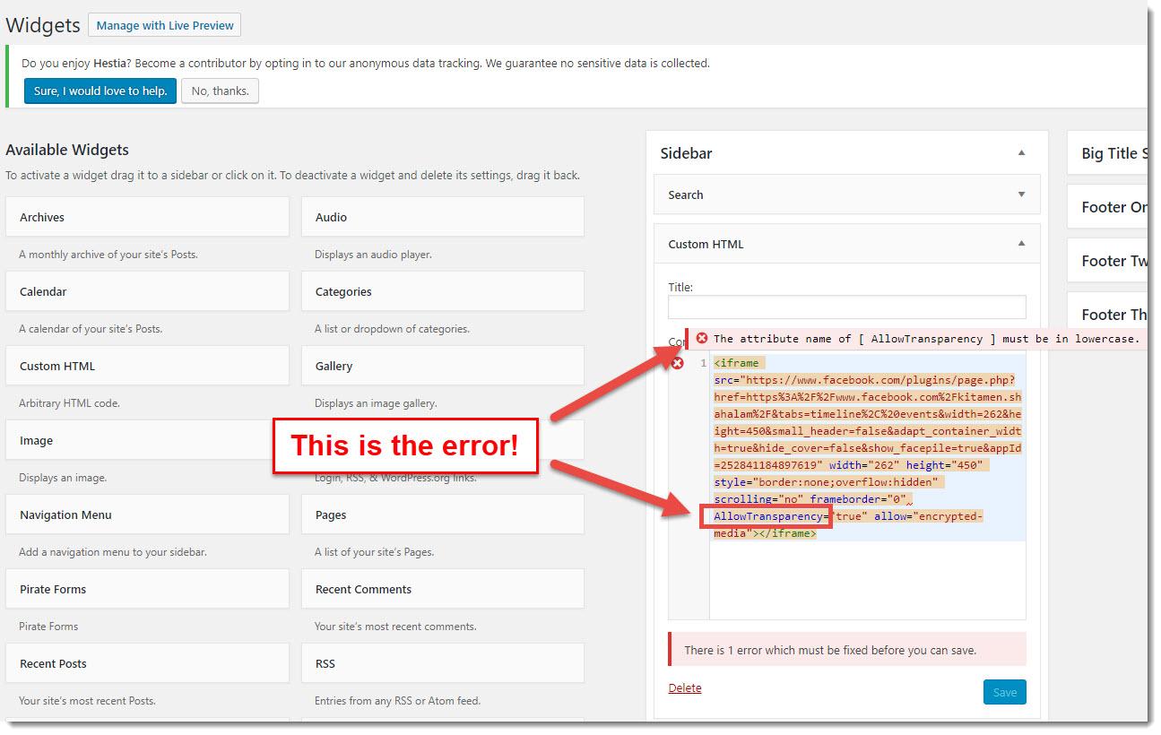 HTML widget error