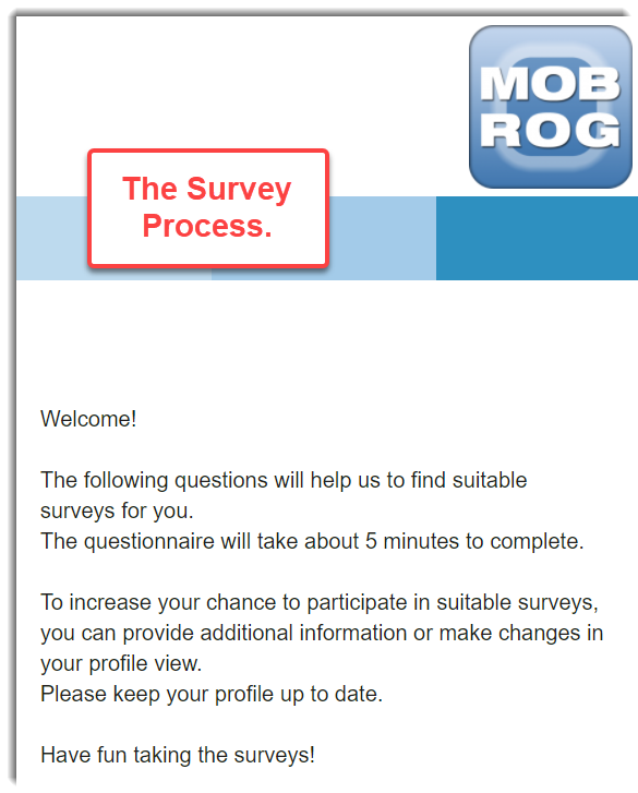 Survey Process Mobrog